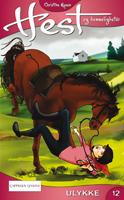 Hest og hemmeligheter 12 - Ulykke